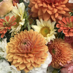 Dahlia Fall Blend Bouquet Subscription