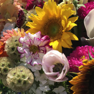 Summer Blooms Bouquet Subscriptions