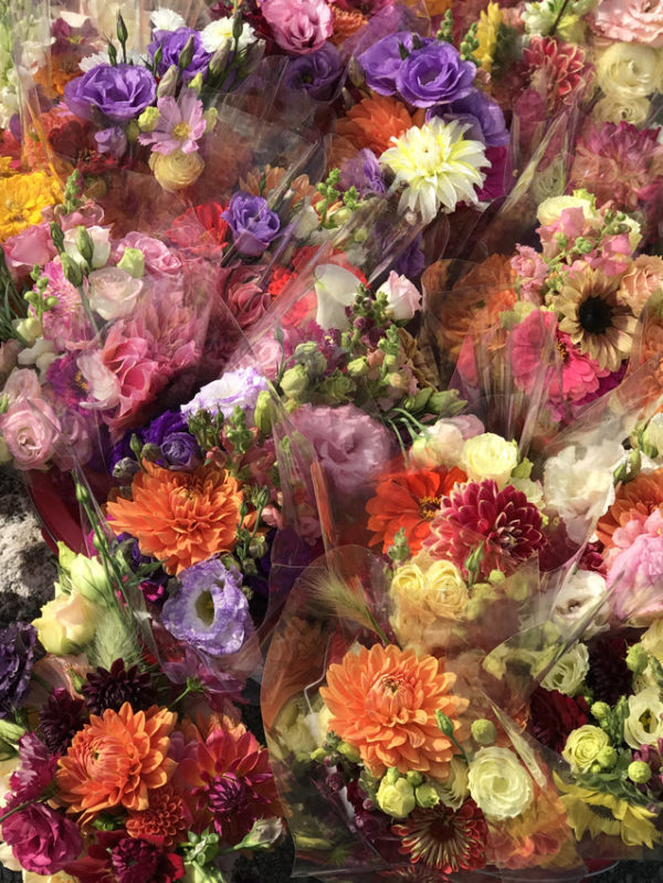 Summer Dahlia Mix Subscription